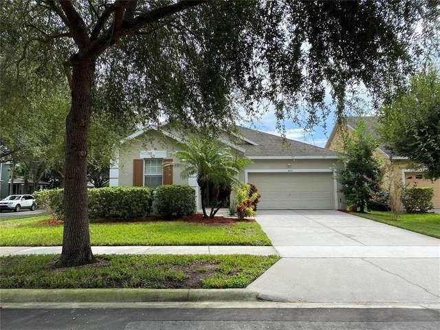 8711 Mccormack Mcrae Way, Orlando, FL 32836 (MLS #O5972238) :: Zarghami Group