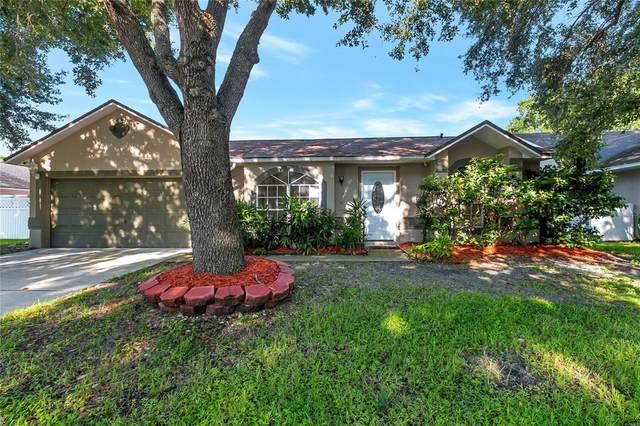 11255 Cypress Leaf Drive, Orlando, FL 32825 (MLS #O5972616) :: Cartwright Realty
