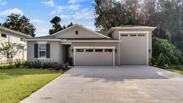 7838 Sloewood Drive, Leesburg, FL 34748 (MLS #O5974314) :: Everlane Realty