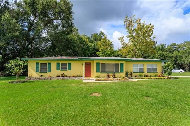 6722 Osceola Drive, Mount Dora, FL 32757 (MLS #O5974757) :: Expert Advisors Group