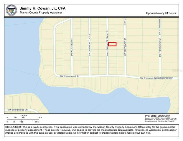 Clearwater Court SW, Dunnellon, FL 34431 (MLS #O5975127) :: GO Realty