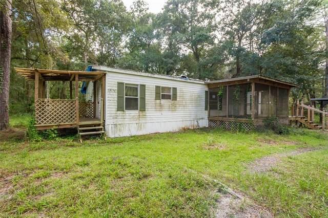 16276 Sandusky Street, Brooksville, FL 34604 (MLS #O5975135) :: The Truluck TEAM