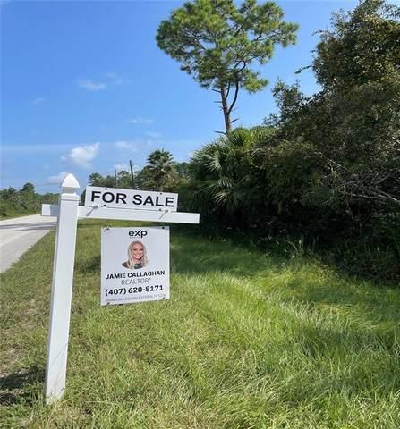 New Smyrna Beach, FL 32168 :: Everlane Realty