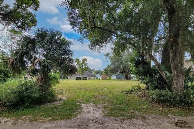Tomberlin Lane, Mount Dora, FL 32757 (MLS #O5975875) :: Bob Paulson with Vylla Home