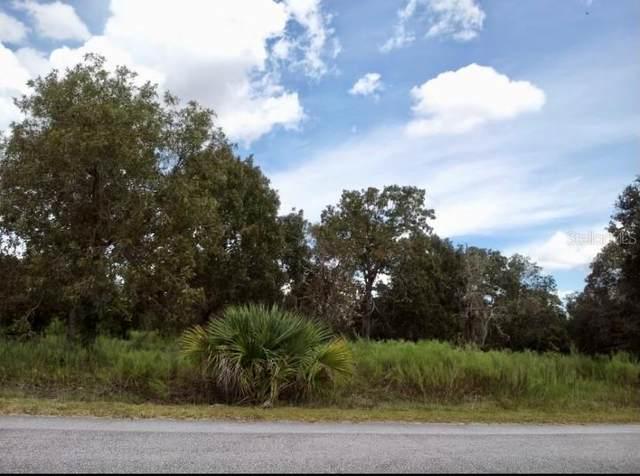 Sw Surf Boulevard, Dunnellon, FL 34431 (MLS #O5978529) :: Team Bohannon
