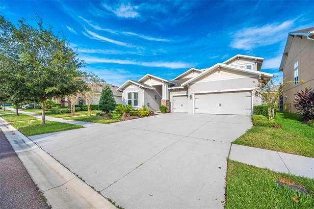 6012 Caldera Ridge Drive, Lithia, FL 33547 (MLS #O5978629) :: Frankenstein Home Team