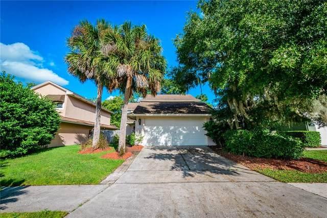 305 Goldstone Place, Lake Mary, FL 32746 (MLS #O5979252) :: Bob Paulson with Vylla Home