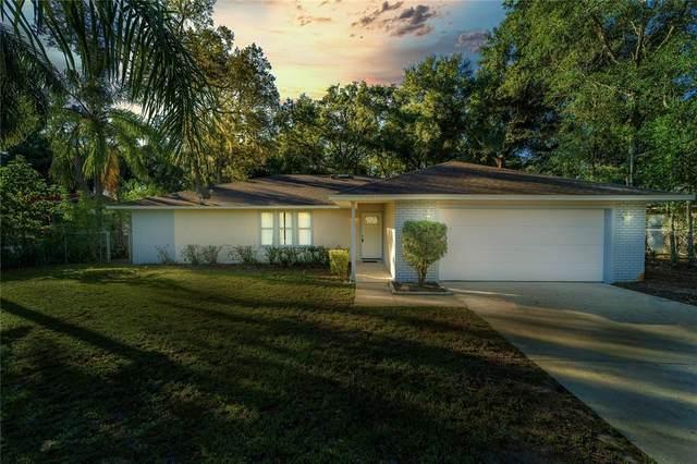 1233 Cardinal Court, Altamonte Springs, FL 32714 (MLS #O5980166) :: Bustamante Real Estate