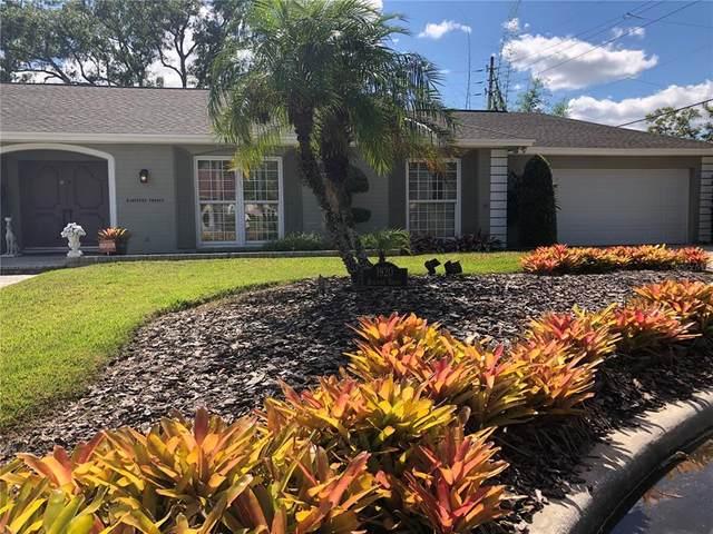 1920 Biscayne Drive, Orlando, FL 32804 (MLS #O5980637) :: Everlane Realty