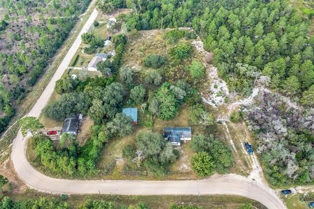 39544 E Cemetary Road, Umatilla, FL 32784 (MLS #O5981508) :: Orlando Homes Finder Team