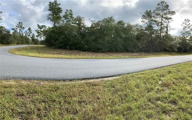 SW 30TH AVENUE Road, Ocala, FL 34473 (MLS #O5981785) :: Delgado Home Team at Keller Williams
