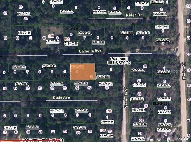 323 Calhoun Avenue, Florahome, FL 32140 (MLS #OM557278) :: Bridge Realty Group