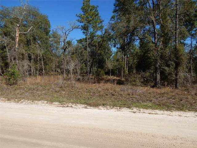TBD NE 5th Street, Williston, FL 32696 (MLS #OM565216) :: Realty Executives Mid Florida