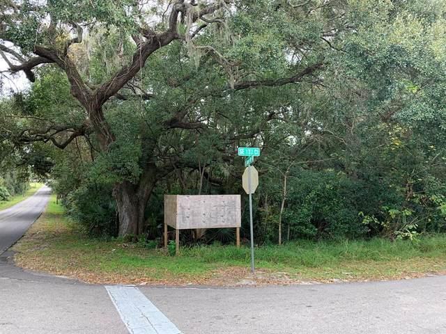 16170 SE 137TH Terrace, Weirsdale, FL 32195 (MLS #OM567557) :: Delgado Home Team at Keller Williams