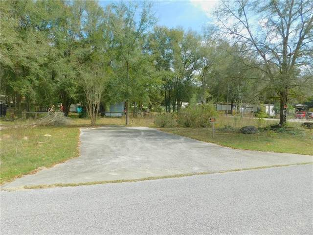 10787 SW 112TH Avenue, Dunnellon, FL 34432 (MLS #OM600263) :: Premier Home Experts