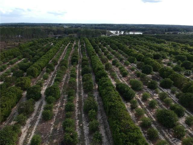 00000 SE 156TH PLACE Road, Weirsdale, FL 32195 (MLS #OM600272) :: Godwin Realty Group
