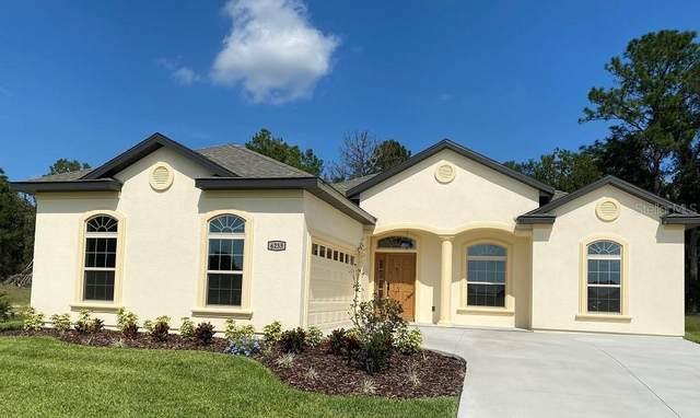6235 SW 95TH Place, Ocala, FL 34476 (MLS #OM600567) :: Bustamante Real Estate
