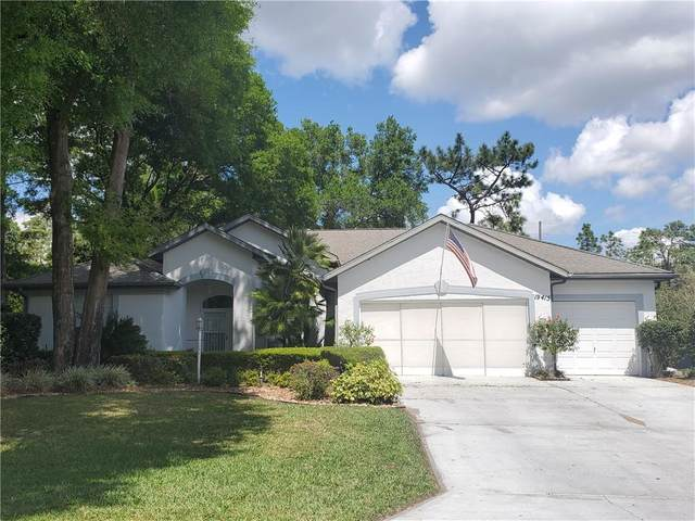 19415 SW 100TH Loop, Dunnellon, FL 34432 (MLS #OM602243) :: The Figueroa Team