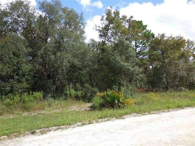 21691 SE 73RD Place, Morriston, FL 32668 (MLS #OM604514) :: KELLER WILLIAMS ELITE PARTNERS IV REALTY