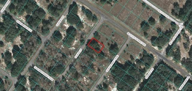 Lot 3 Guava Lane, Ocklawaha, FL 32179 (MLS #OM605500) :: Griffin Group