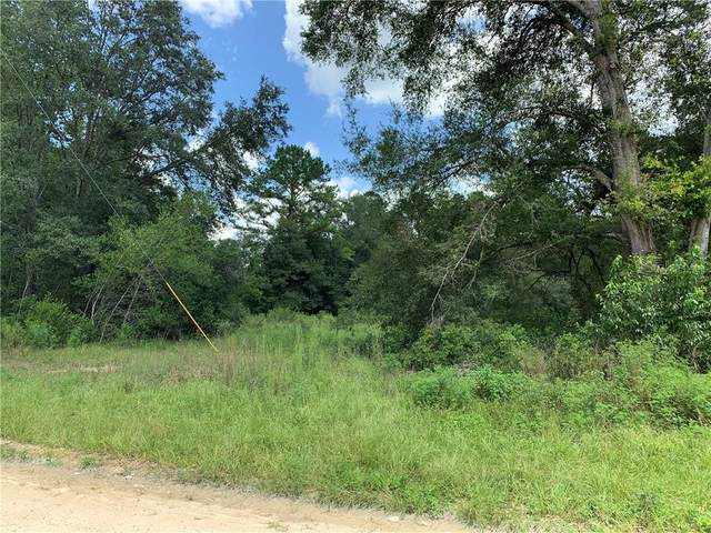 TBD SE 77TH Place, Morriston, FL 32668 (MLS #OM606735) :: Young Real Estate