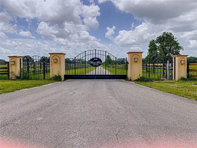 16814 W Highway 326, Morriston, FL 32668 (MLS #OM606751) :: Pristine Properties