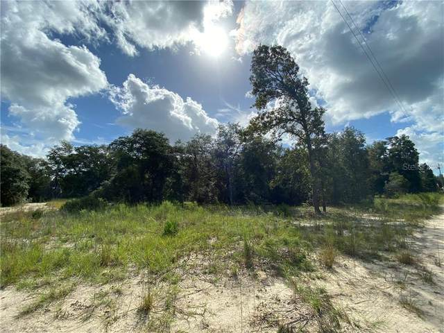 5906 NE 138TH Court, Williston, FL 32696 (MLS #OM609143) :: Bustamante Real Estate