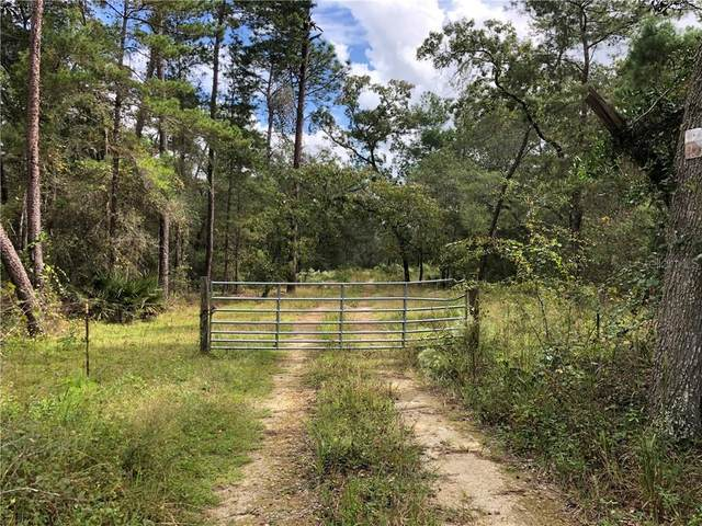 tbd County Rd 314-A, Silver Springs, FL 34488 (MLS #OM610302) :: Griffin Group