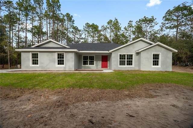 9946 SW 202ND Circle, Dunnellon, FL 34431 (MLS #OM610319) :: Griffin Group