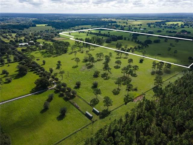 9710 NW 160TH Avenue, Morriston, FL 32668 (MLS #OM611073) :: Griffin Group