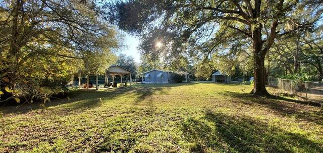 11265 NE 64TH Street, Williston, FL 32696 (MLS #OM611494) :: Young Real Estate