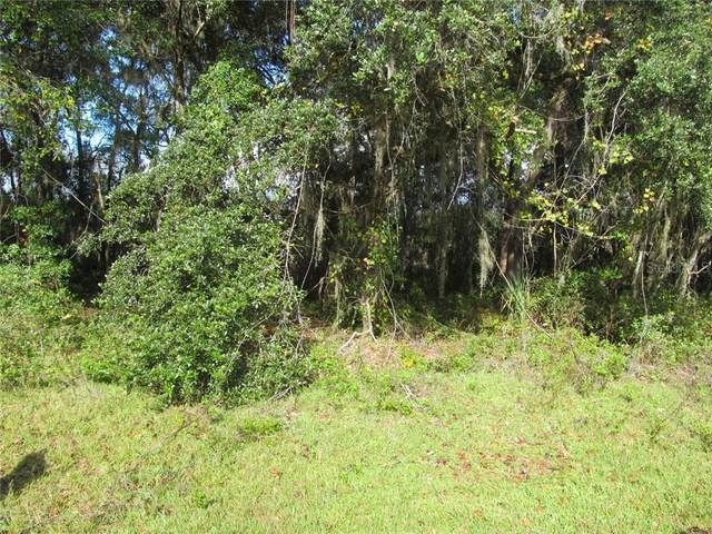 00 Guava Terrace, Ocklawaha, FL 32179 (MLS #OM612161) :: BuySellLiveFlorida.com