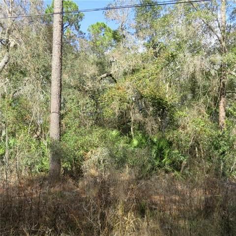 10 SE 10 Street, Silver Springs, FL 34488 (MLS #OM613400) :: Griffin Group