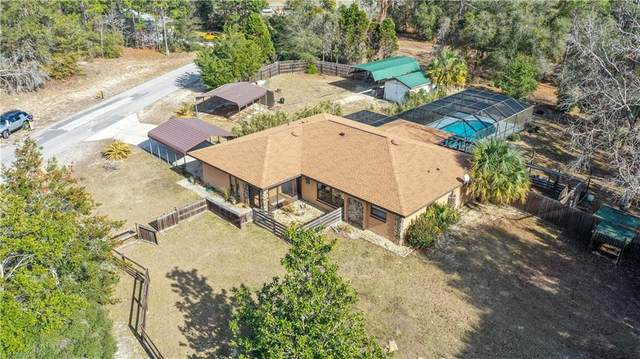 4190 W Fireside Lane, Citrus Springs, FL 34433 (MLS #OM614052) :: The Paxton Group
