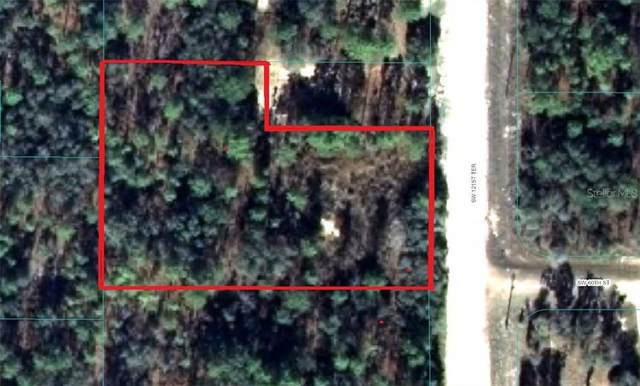 0 SW 121 Terrace, Ocala, FL 34481 (MLS #OM614174) :: Baird Realty Group