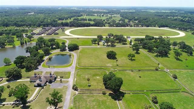 0 SE 159TH Lane Lot 34, Summerfield, FL 34491 (MLS #OM617718) :: Prestige Home Realty