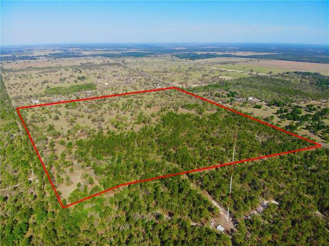 TBD W Hwy 328, Dunnellon, FL 34432 (MLS #OM618152) :: The Heidi Schrock Team