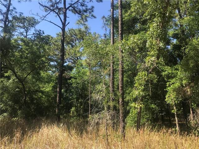 TBD SW 38TH Place, Dunnellon, FL 34432 (MLS #OM618264) :: Rabell Realty Group
