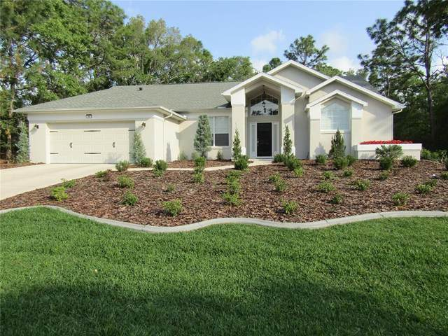 11 Maidenbush Court E, Homosassa, FL 34446 (MLS #OM618673) :: Armel Real Estate