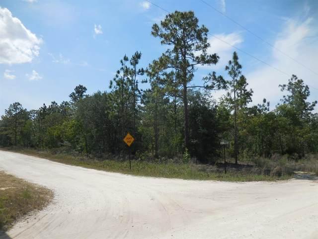 1190 NE 150TH Avenue, Williston, FL 32696 (MLS #OM619920) :: Armel Real Estate