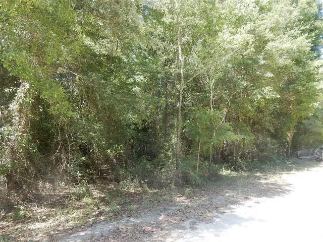 11190 NE 64TH Street, Williston, FL 32696 (MLS #OM619922) :: Everlane Realty
