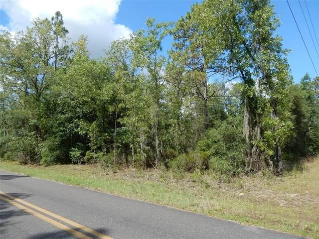 6590 NE 126TH Avenue, Williston, FL 32696 (MLS #OM621233) :: Armel Real Estate