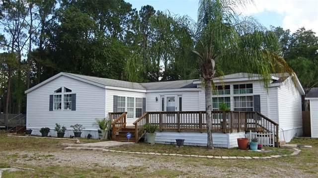 7330 SW 17TH Place, Ocala, FL 34474 (MLS #OM621269) :: Everlane Realty