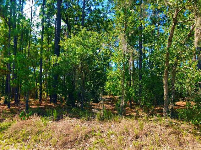 Lot 222 SW 114 Place, Ocala, FL 34476 (MLS #OM621467) :: Griffin Group