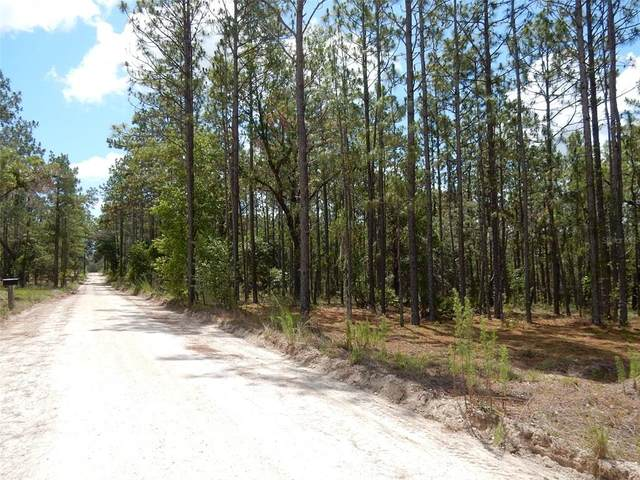 11850 & 11950 SE 59TH Place, Morriston, FL 32668 (MLS #OM621492) :: Your Florida House Team