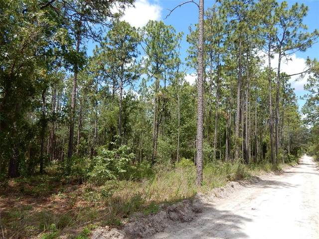 11950 SE 59TH Place, Morriston, FL 32668 (MLS #OM621495) :: Your Florida House Team