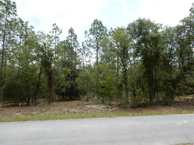 1983 SW Wood Road, Dunnellon, FL 34430 (MLS #OM622236) :: Armel Real Estate
