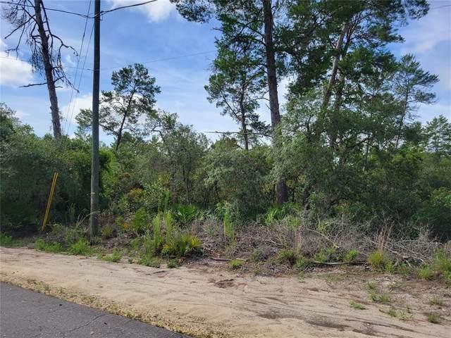 TBD Malauka Pass Lane, Ocklawaha, FL 32179 (MLS #OM622474) :: Team Turner