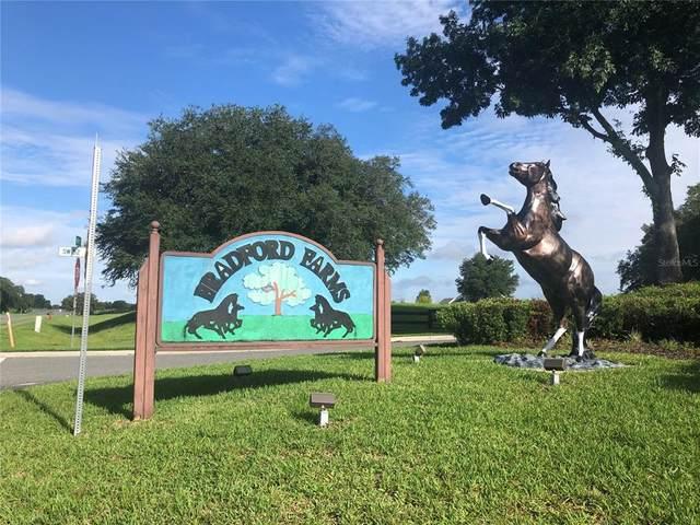 00 SW 54 Terrace, Ocala, FL 34476 (MLS #OM622613) :: Expert Advisors Group