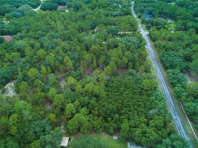 3538 N Eisenhower Avenue, Hernando, FL 34442 (MLS #OM622615) :: Gate Arty & the Group - Keller Williams Realty Smart